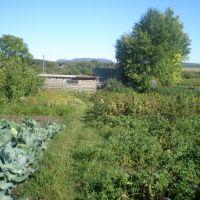 Огород, Балкащино