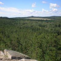 Наш лес, Балкащино