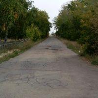 улица Школьная, Вишневка