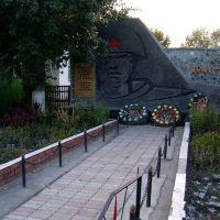 Памятник погибшим в ВОВ, Вишневка