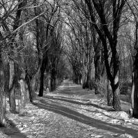 Park, Ерментау