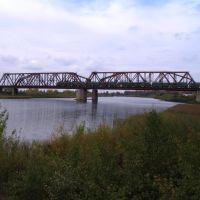 Мост, Жалтыр