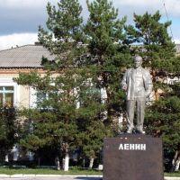 Lenin v Sokolovke, Жалтыр