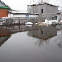 Уютный пруд без лебедей, Макинск