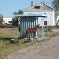 Поворот на ул. Московскую, Макинск