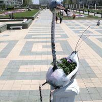 Астаниские картинки, Астана