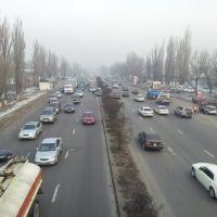 Рыскулова - Емцова: вид на восток, Аршалы