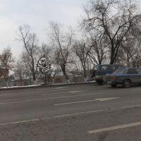 Tashkentskaya - Baumana, Аршалы