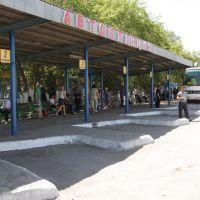 Автовокзал, Атбасар