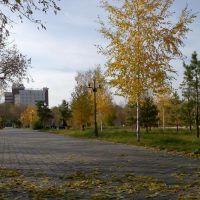 Central Park - Autumn, Кокшетау