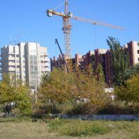 Новостройка, Кызылорда