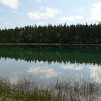 Pine Lake, Wood Buffalo Natl Park, June 2009, Гранд-Праири