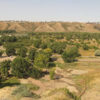 Contrasting Green And Gold In Indian Battle Park, Lethbridge AB Sep 12, Летбридж