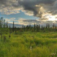 Канада Вуд-Баффало Экологический туризм, Медикин-Хат