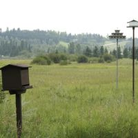 Bird Houses, Kerry Wood Nature Centre, Ред-Дир