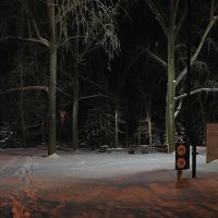 Waskasoo Park, Winter Night, Ред-Дир