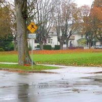 Caution: Fast Games, Ванкувер