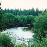 fly fishing Pinkut Creek, Дельта