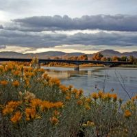 KAMLOOPS: day flows down along the river but sagebrush will keep it deep in its memory  forever, Камлупс
