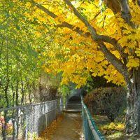 Fall Has Arrived, Камлупс