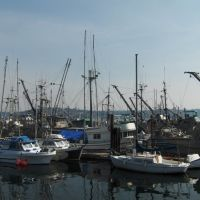 0434_Campbell River. Hafen_100815, Кампбелл-Ривер