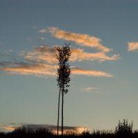 Aspen evening sky, Миссион-Сити
