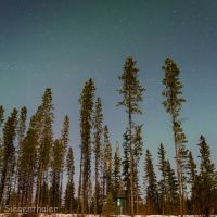 Starry night sky at Co-op Lake, Принц-Джордж