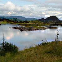 Stellako River enters Fraser Lake, Принц-Джордж