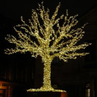 "Happy  Names Day , Nicholas ! - December 6 , Saint Nicholas Day  ( "" Zburatorul "" , title by Ghiocela ), Монреаль"