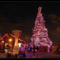L`arbre de Noël a Sherbrooke, Шербрук