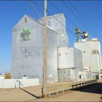 Manitoba Grain Elevator - Brandon, Брандон