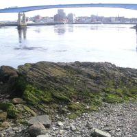 Saint John River, Сент-Джон