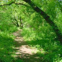 Walking Path on the Grand, Брантфорд