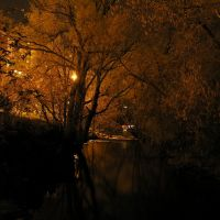 Creek by Moses Springer Arena, Ватерлоо