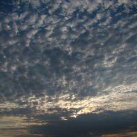 Sunset, Каледон