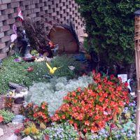 Magical Garden In Burlington, Ла-Саль