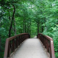 bridge, Оаквилл
