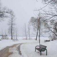 Beach in Snow, Ориллиа