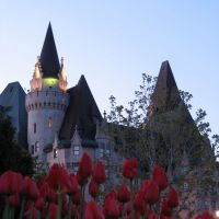 Tulips and Chateau Laurier, Оттава