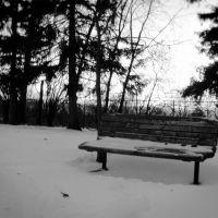 Snowy Park Bench, Ошава