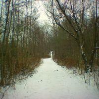 Path to Valley Farm Road, Пикеринг