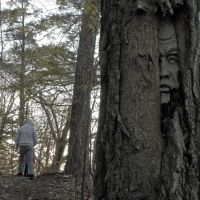 Face in the woods, Пикеринг
