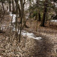 Random path, Пикеринг