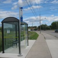 YRT Bus Stop #1196 at St. Robert CHS, Ричмонд-Хилл