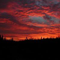 Stormy sunrise, Садбури