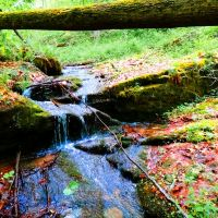 Waterfall, Сарниа