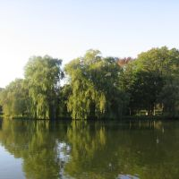 Vista Río Avon-Stratford, Стратфорд