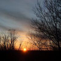 Sunset, Тимминс