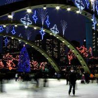 Toronto_City_Hall, Торонто