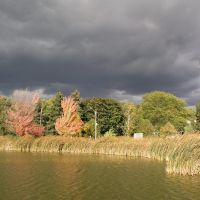 Oakbank Pond in Fall, Торнхилл